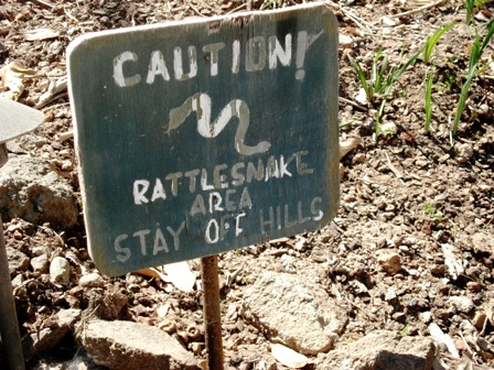 Rattlesnake sign in Sonoma, California.