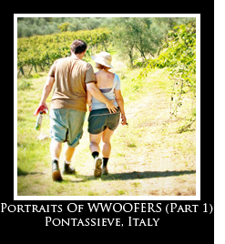 Portraits of WWOOFERS Photo Essays
