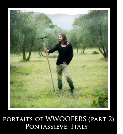 Portraits of Wwoofers part 2 Photo Essays