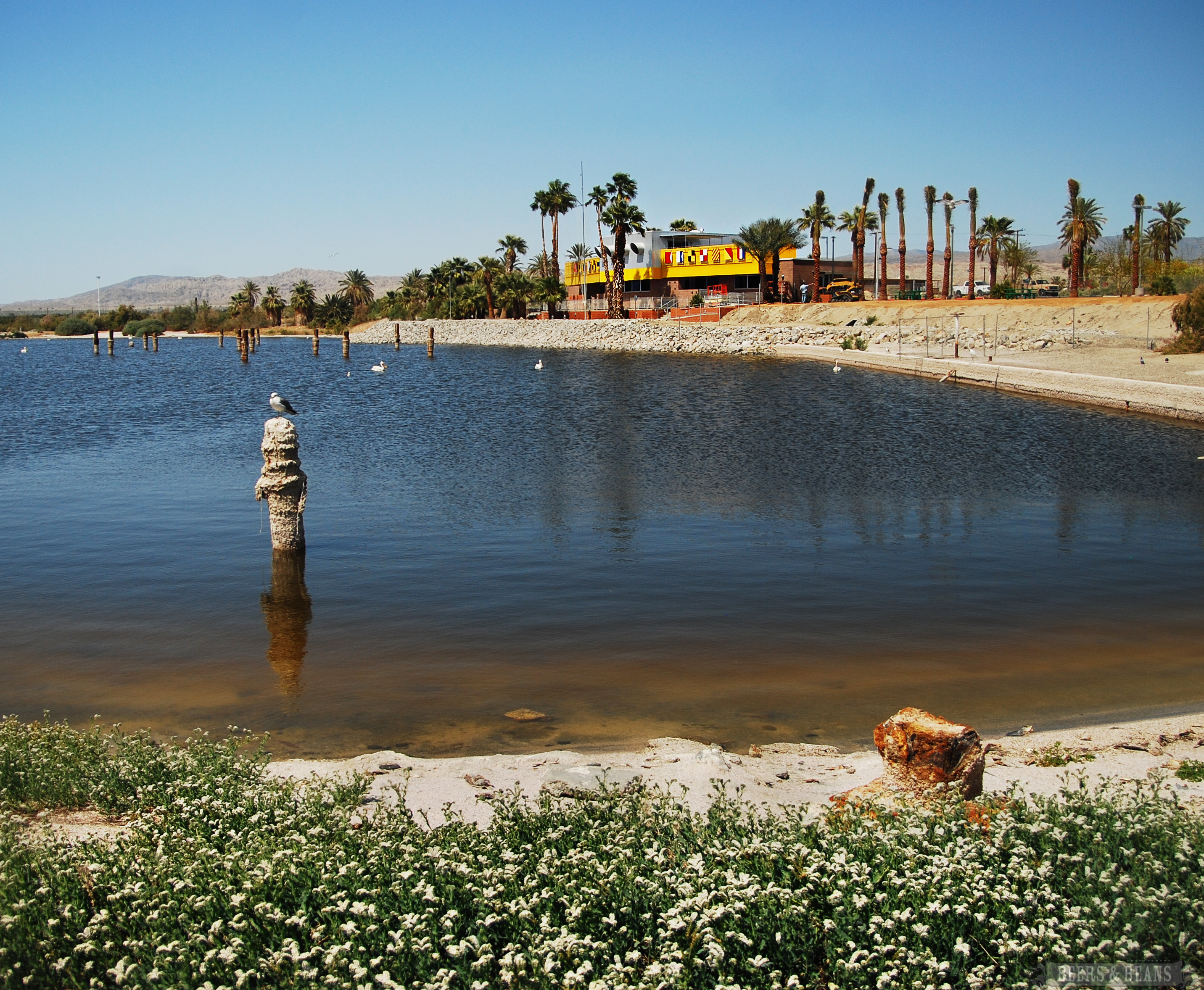 Salton-Sea-California-2