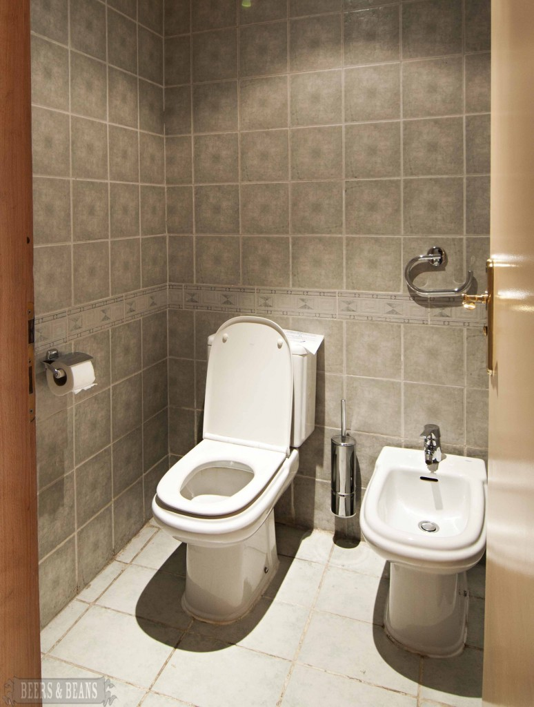 . Getting The Right Combination Of Toilet And Bidet