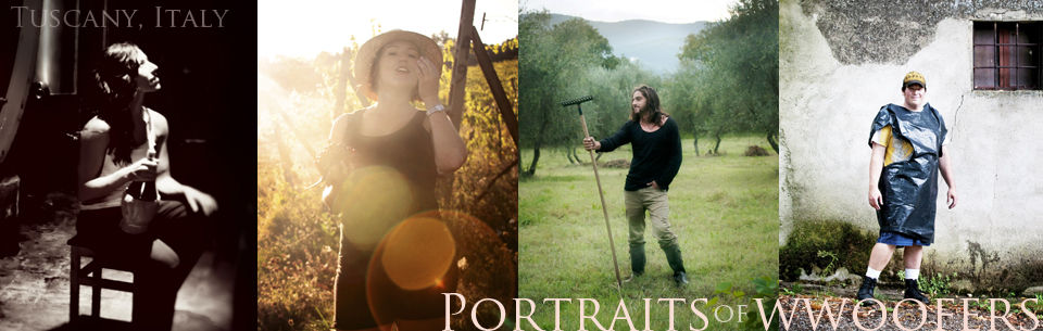 Photographs of people WWOOFing in a Tuscan Vineyard.