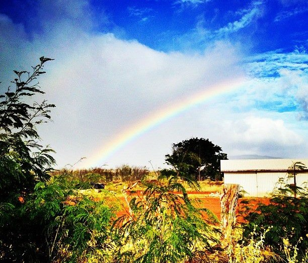 Molokai Instagram Photos: An island rainbow.
