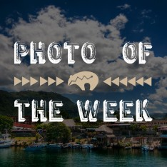 photo of the week 3