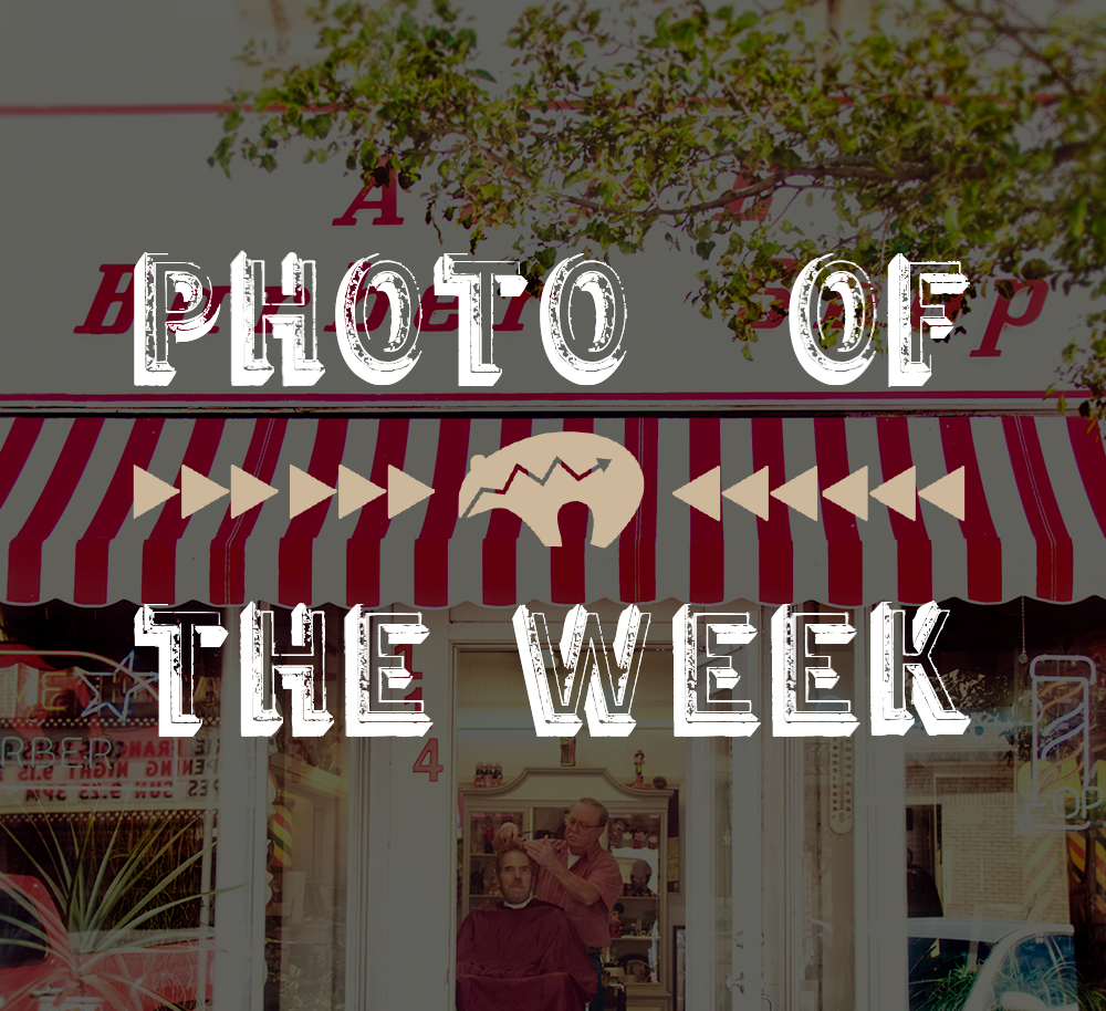 photo of the week 4