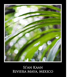 sian kaan riviera maya icon Photo Essays